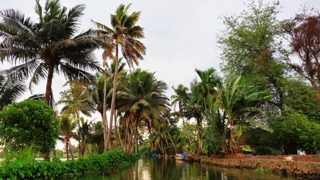 Kochi to Alleppey cycling routes