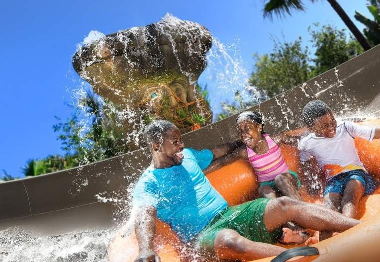 Disney's Typhoon Lagoon is covered with numerous body slides, tube slides